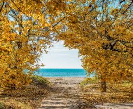 Отдых в Бердянске и на Бердянской косе в сентябре в бархатный сезон — Азовское море
